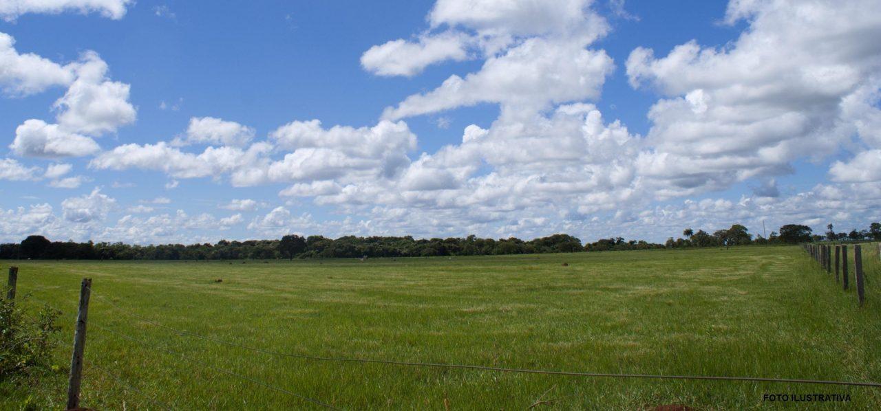 Campo à venda no distrito de Jaguari em Lavras do Sul/RS